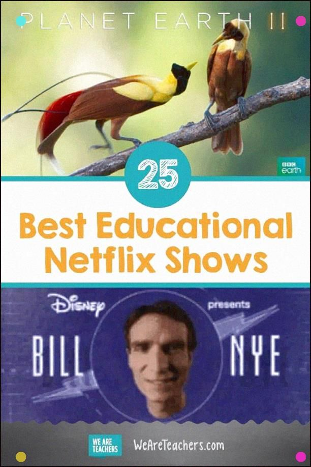 24 Educational Netflix Shows To Stream In Your Classroom. Look at The Best Educational Netflix Show