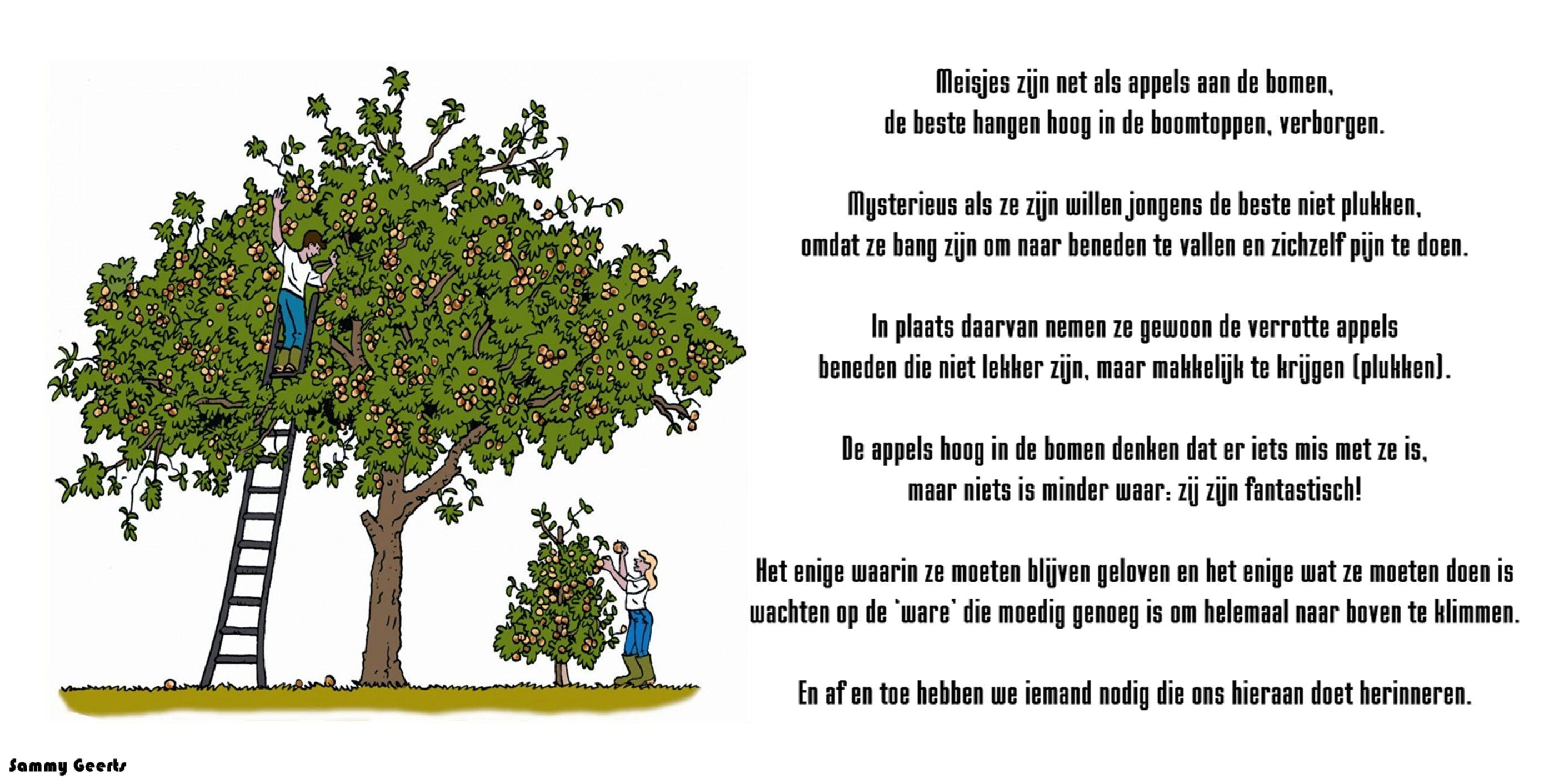 Citaten Over Bomen : Meisjes zijn net als appels aan de bomen spreuken