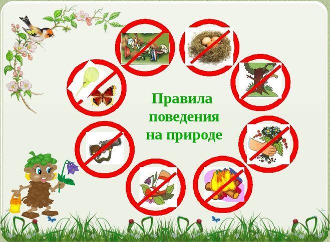 Экологические знаки охраны природы в картинках ( 40 фото ...