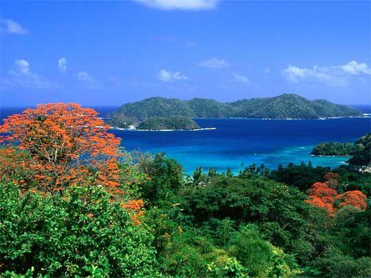 Trinidad And Tobago Caribbean Islands Trinidad Trinidad And Tobago