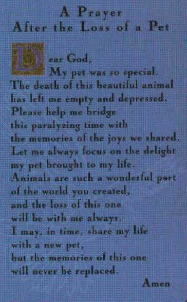 A Dog's Prayer Goodbye | We were given this 'Loss of a Pet