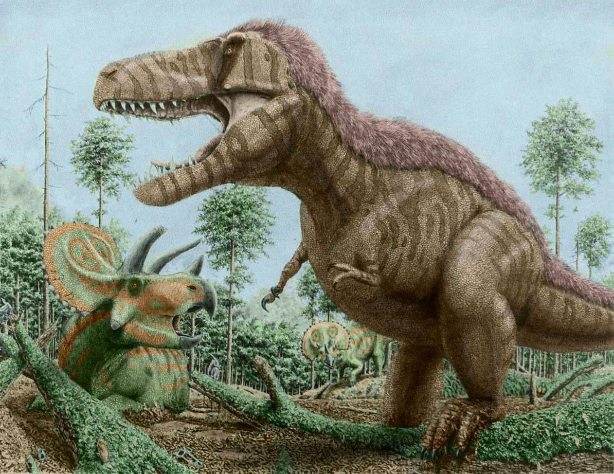 Pin De Martha Jimenez En Prehistori Animals Animales Extintos Animales Prehistoricos Dinosaurios Con estos dibujos de dinosaurios podrás imprimir y pintar grandes animales que ya se han extinguido como el branquiosaurio, el velociraptor, el tiranosaurio o el diplodocus. pinterest