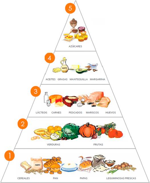 Piramide alimenticia ciencias nutrition food food for Comida saludable para ninos
