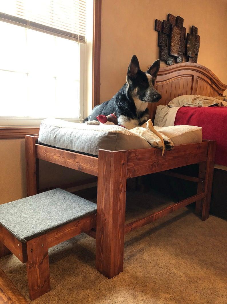 Large Dog Bed With Step Or Ramp Wood Raised Dog Bed Elevated Dog Bed Platform Pet Furniture Wood Pet Bed Window Apartment Dog Bed Elevated Dog Bed Raised Dog Beds Wood Dog