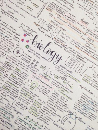 Studyblr Study Motivation School