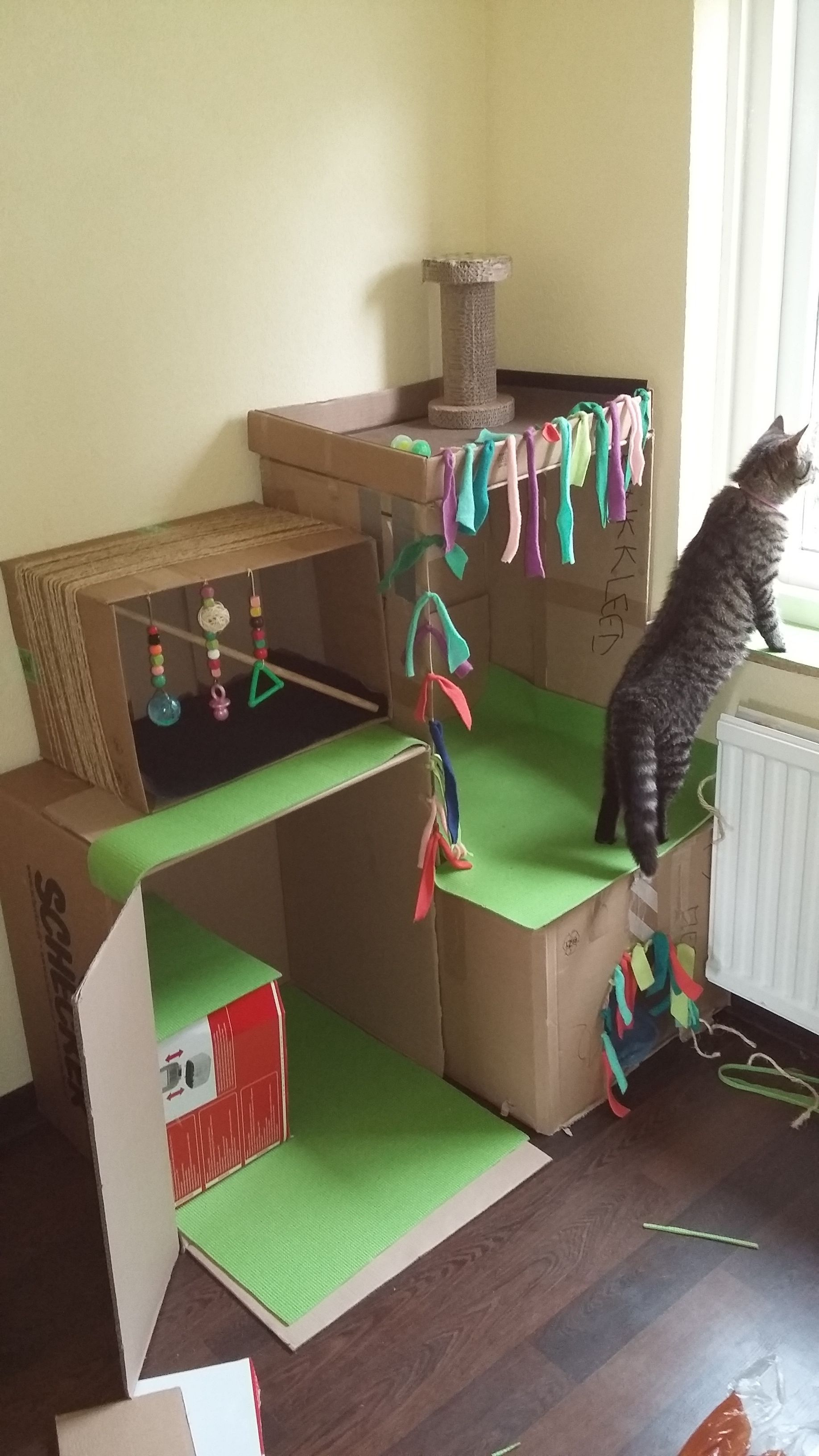 Diy Beautiful Cat House For Three Little Kittens Cardboard Cat House Cat House Diy Cat House