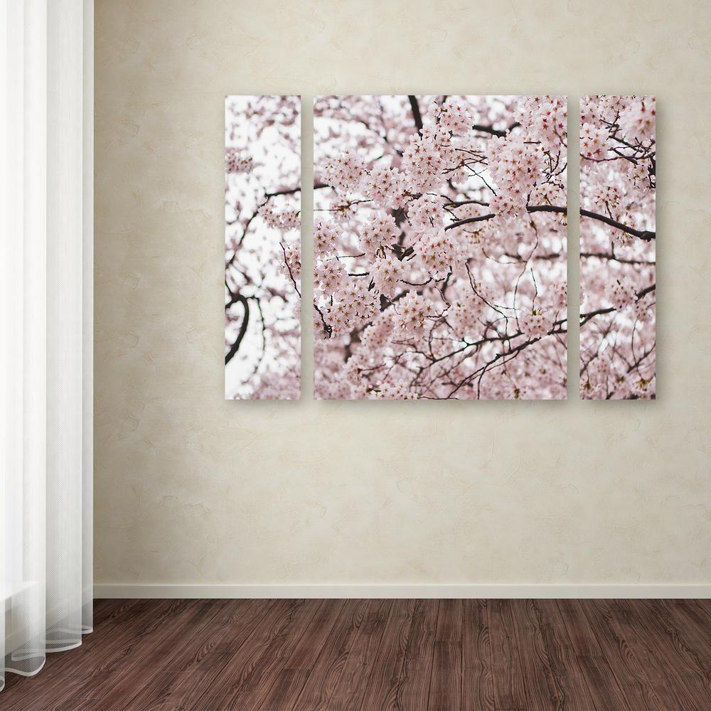 """24 in. x 32 in. """"Cherry Blossoms"""" by Ariane Moshayedi Printed Canvas Wall Art"""