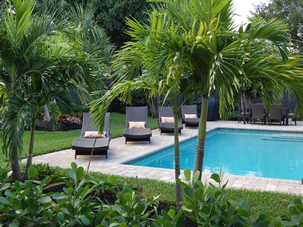 Northwood Shores house rental - Your tropical garden and private ...