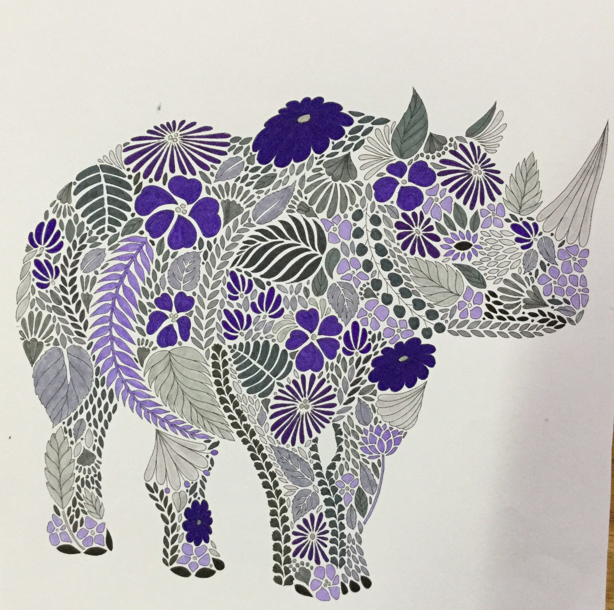 Colouring Millie Marotta Rhinoceros
