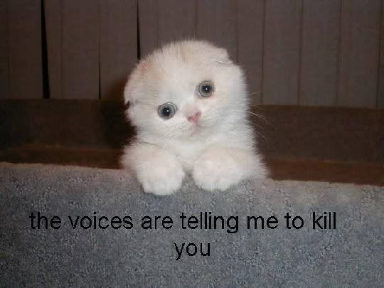 The voices are telling me to kill you.