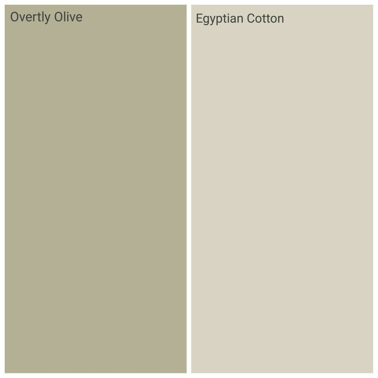 Overtly Olive Kitchen Paint: Dulux Overtly Olive And Egyptian Cotton, Kichen Family