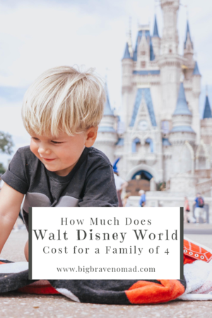 How Much Does Disney World Cost For A Family Of Four Traveling By Yourself Disney World Trip Disney World