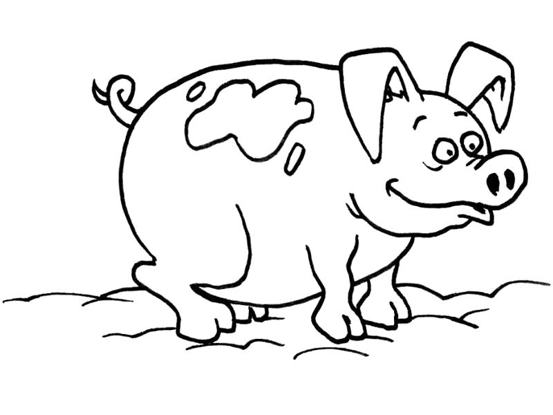 pig play mud coloring pages
