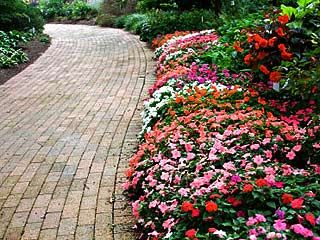 The best flowers to plant in spring gardening the outdoors the best flowers to plant in spring mightylinksfo