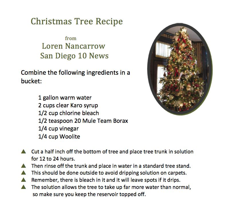 loren nancarrows christmas tree recipe a homemade solution that will allow a cut tree to