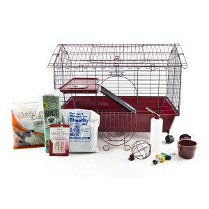 All Living Things® Deluxe Guinea Pig Starter Kit