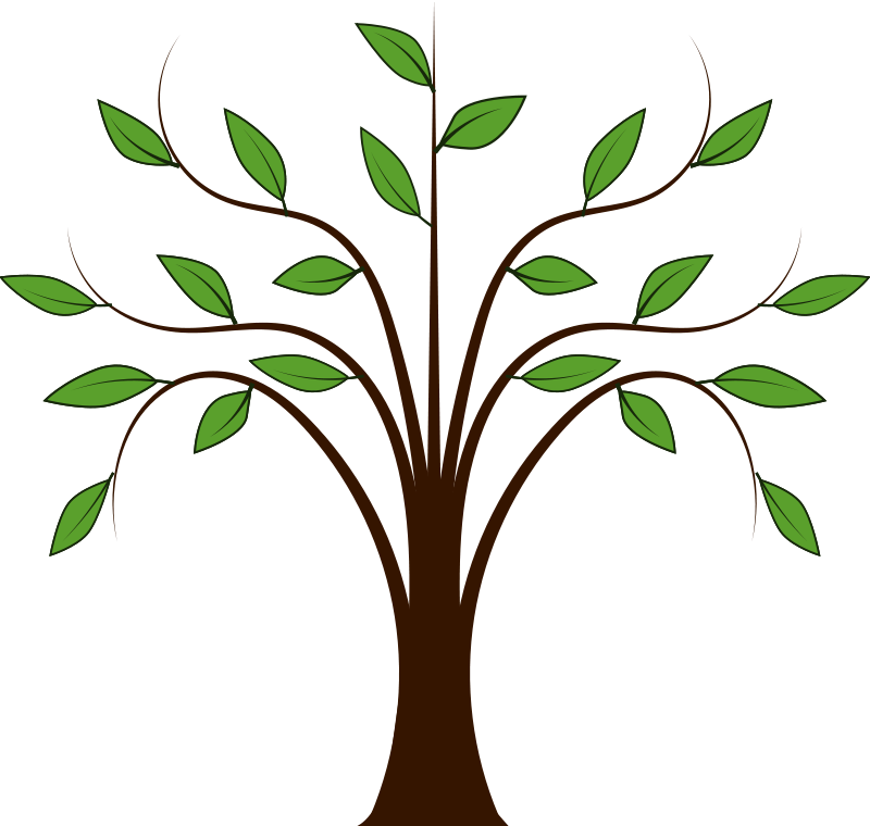 free vector whispy tree vector graphic available for free download rh pinterest com bamboo tree vector free download bamboo tree vector free download