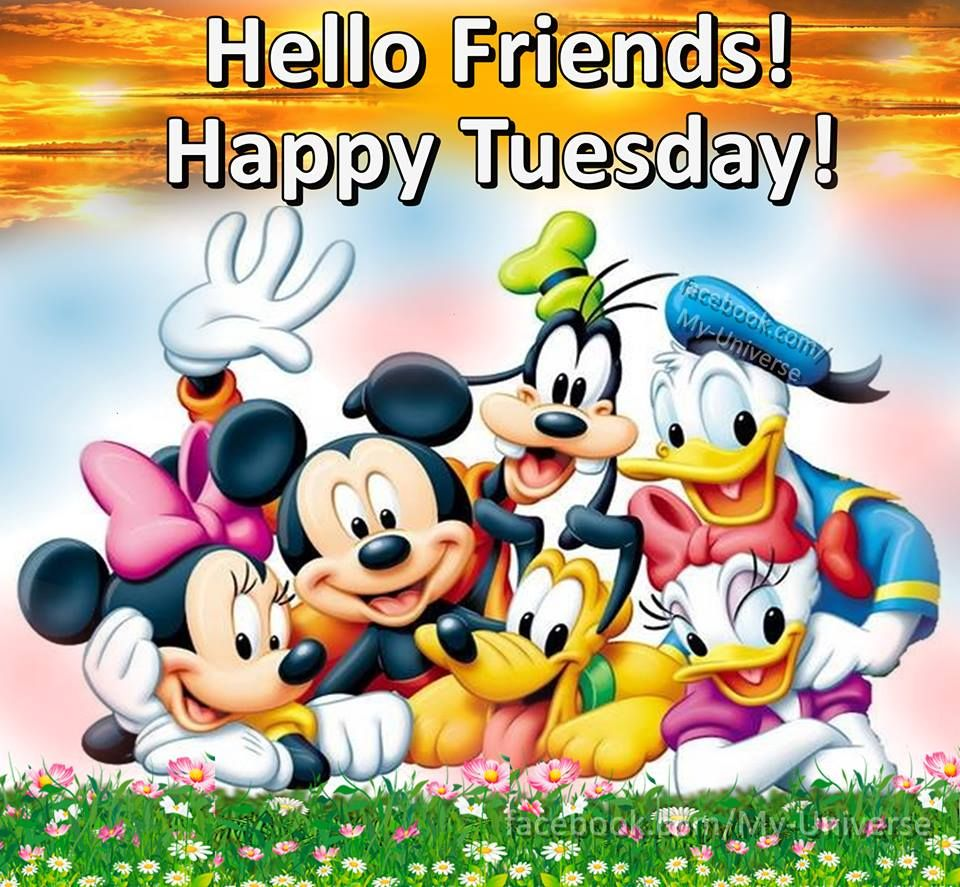 Hello Friends! Happy Tuesday! | Happy tuesday quotes, Happy ...