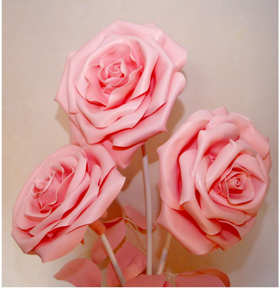 Pink Rose Rose Pink Rose Flowers