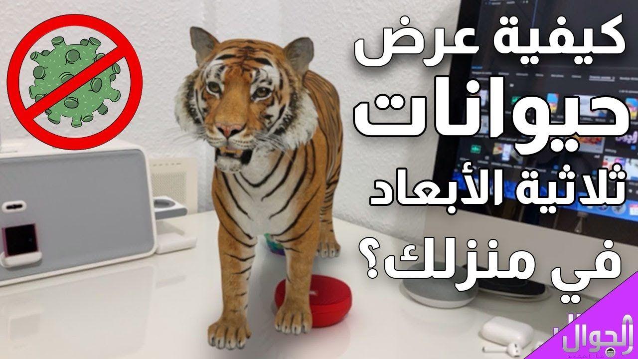 كيفية عرض حديقة حيوانات ثلاثية الأبعاد في منزلك خلال فترة الحجر الصحي