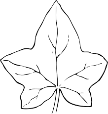 Leaf Pattern To Color بحث Google Leaf Coloring Page Fall Leaves Coloring Pages Leaf Clipart