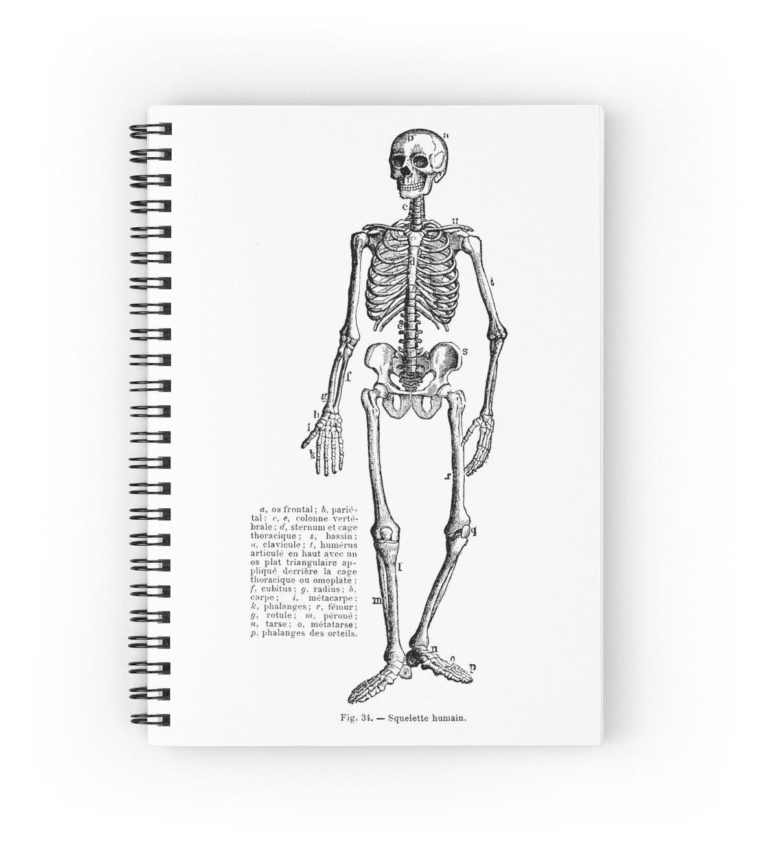 Renaissance Human Anatomy Skeleton\' Spiral Notebook by Pixelchicken