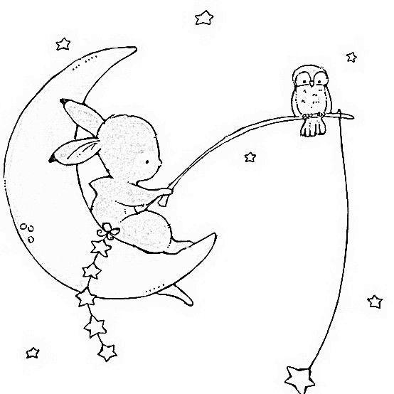 sweet bunny  u0026 moon