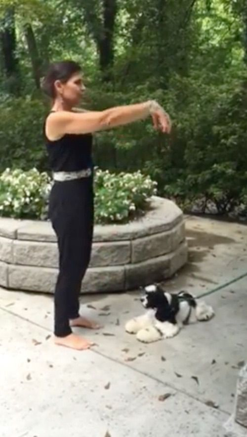 #howto boost your personal #energy with #qigong #exercise: http://unlimitedenergynow.com/commencing-form-qi-gong-exercise-1/