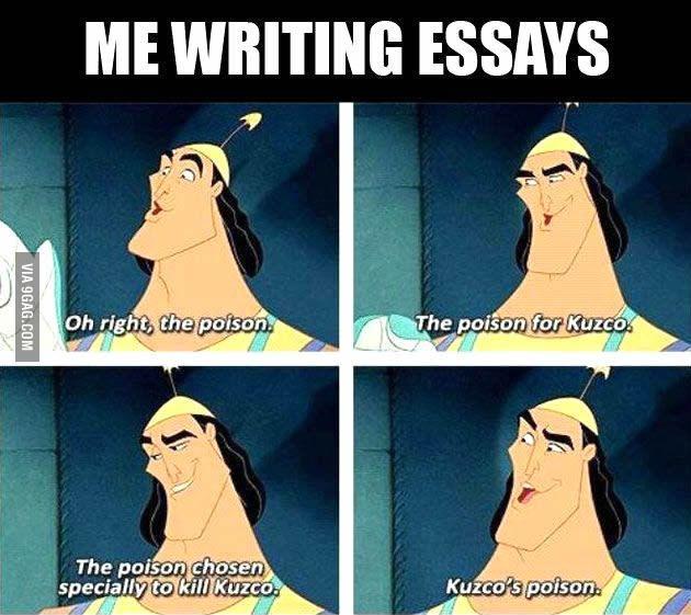 me when i write essays random humor and memes me when i write essays