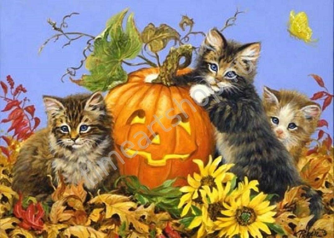 Котята и хэллоуин, картины раскраски по номерам, своими ...