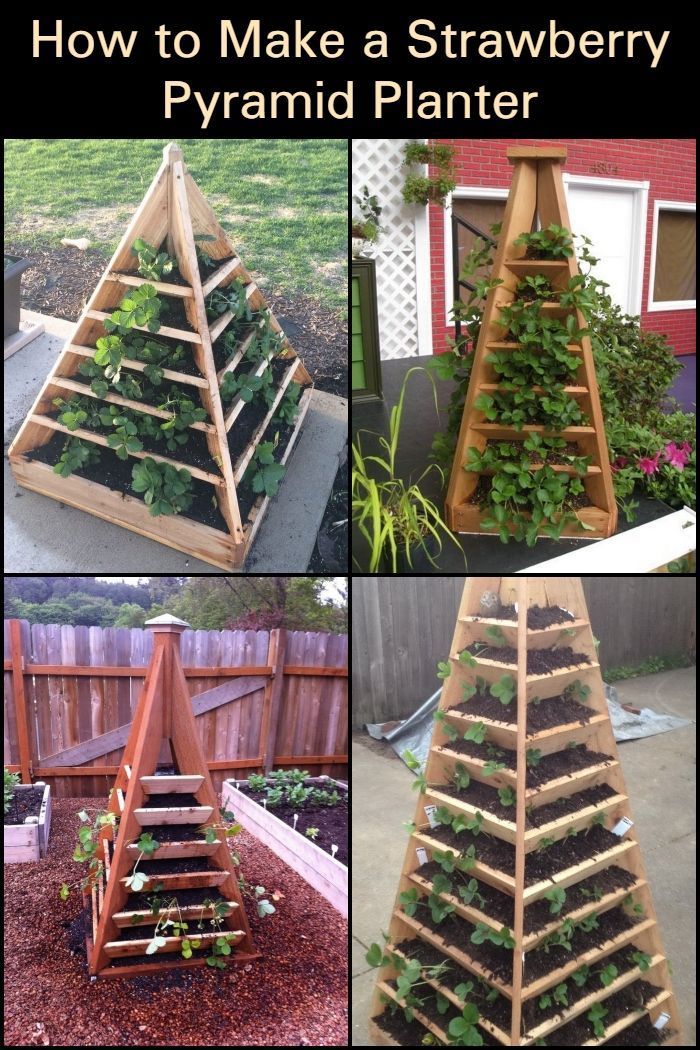 Photo of How To Make A Strawberry Pyramid Planter