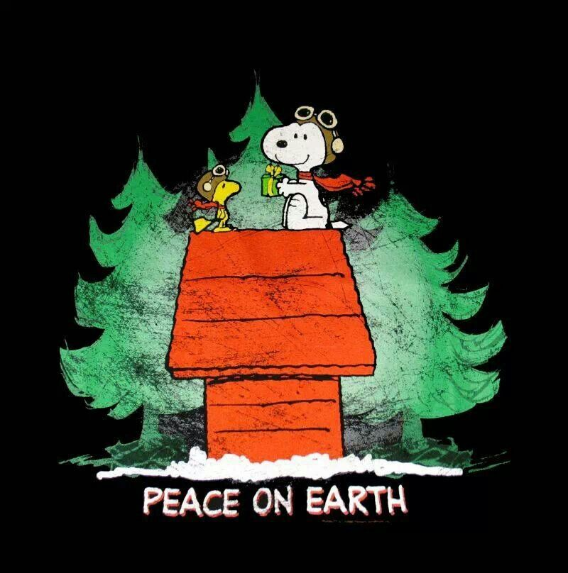 merry christmas snoopy and woodstock penuts pinterest. Black Bedroom Furniture Sets. Home Design Ideas