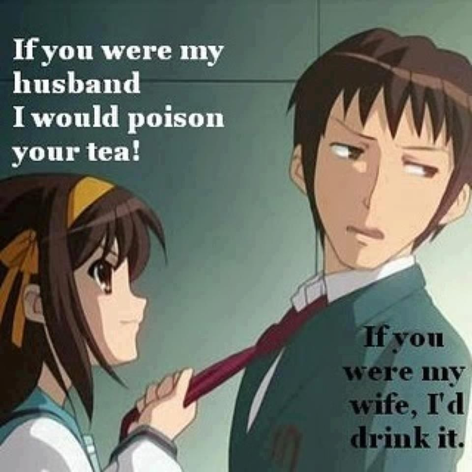 The Melancholy of Haruhi Suzumiya. This pretty much summarizes their relationship.