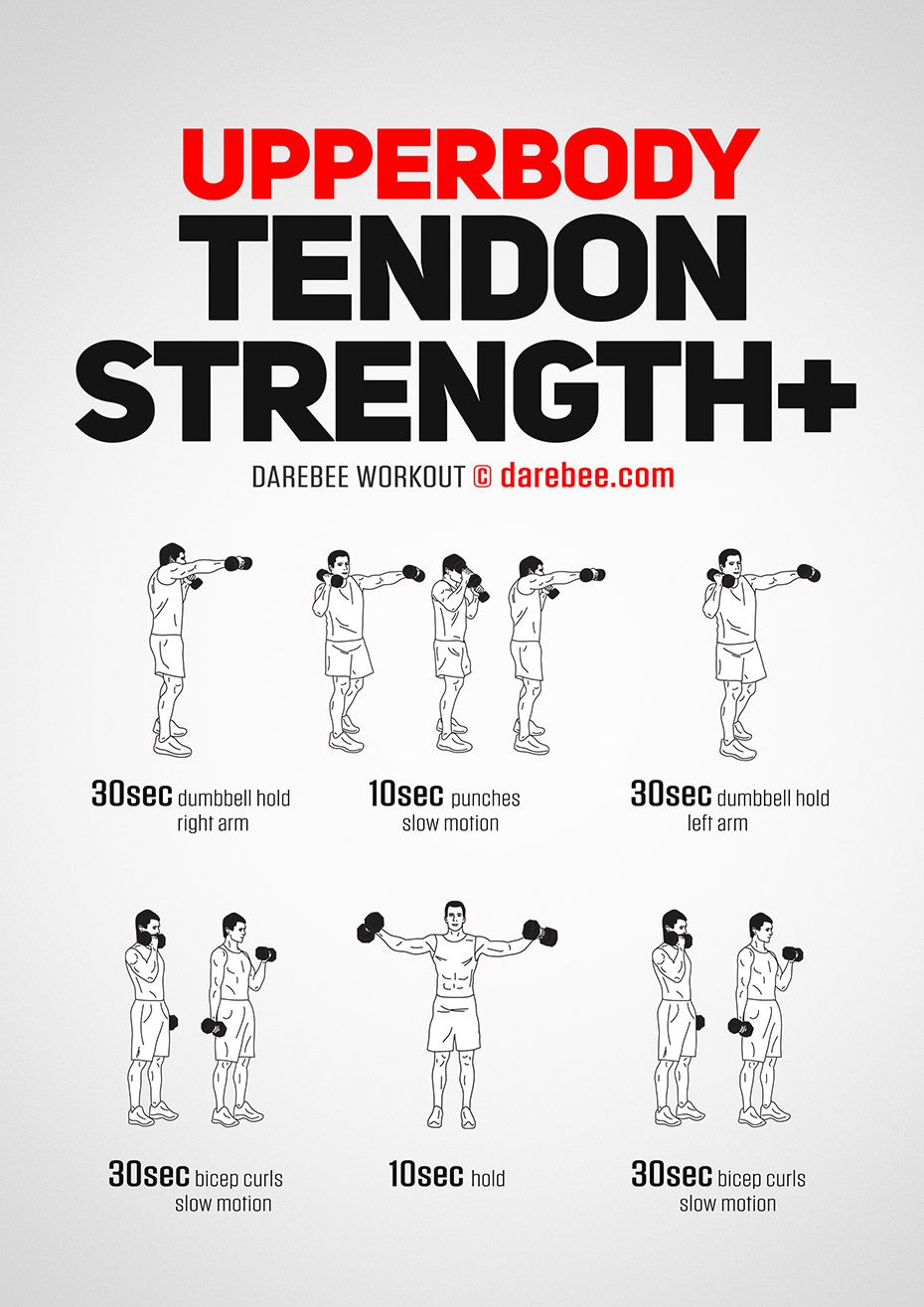 Upperbody Tendon Strength Plus Body Workout Plan Boxer Workout Dumbbell Workout
