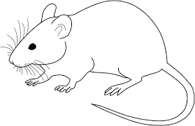 Image Result For Black And White Clip Art Of A Mouse Embroidery Patterns Free Black And White Embroidery Patterns