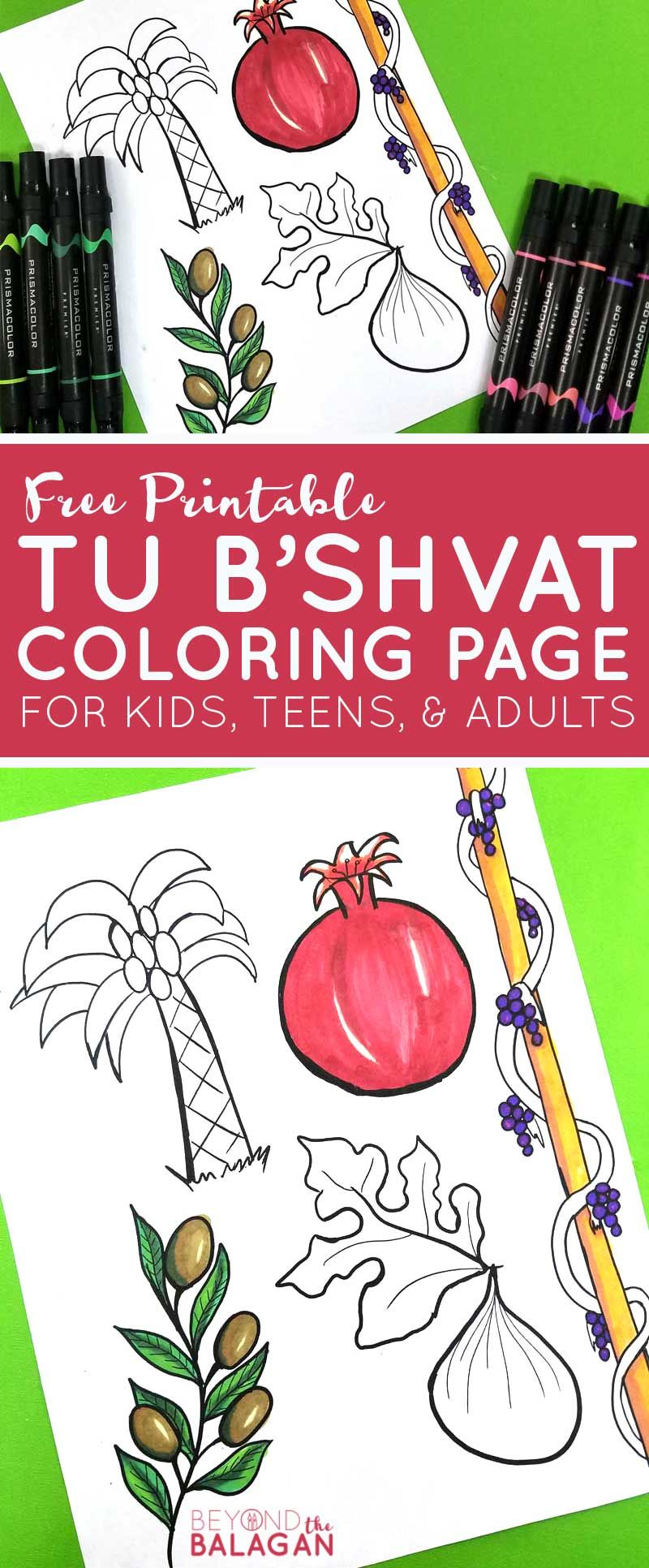 This Beautiful Fruit Coloring Page For Adults And Kids Features The Five That Israel Is