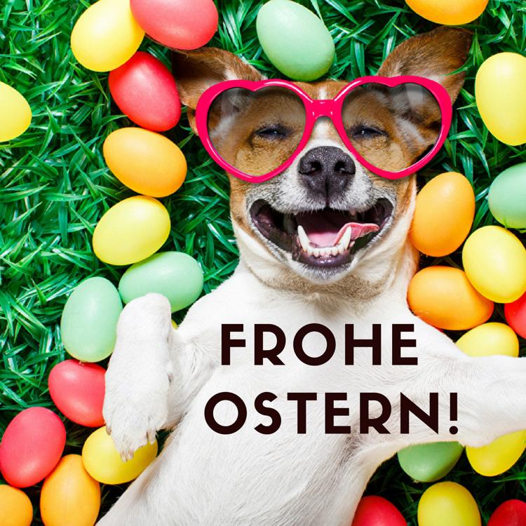 Kostenlos ostern whatsapp Ostergrüße für