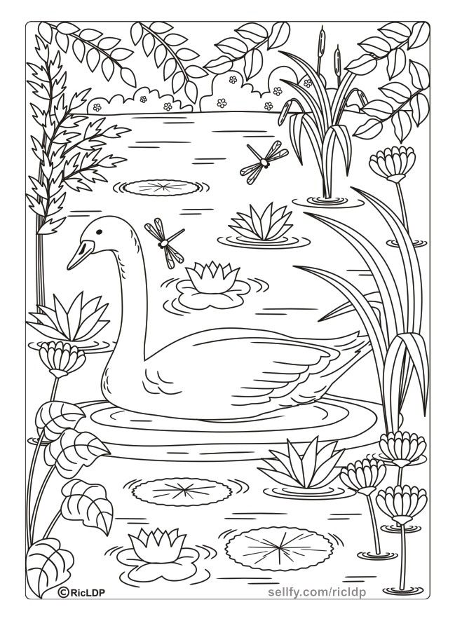 Twenty Adult Coloring Pages | Adult coloring pages ...
