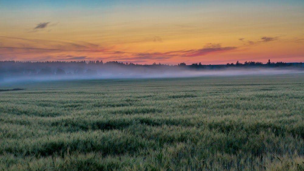 valokuvatorstai vilja by Heikki Rantala