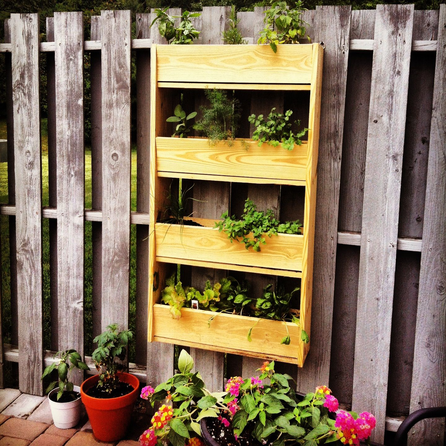 Hanging Herb Garden. $30 In Supplies From Home Depot