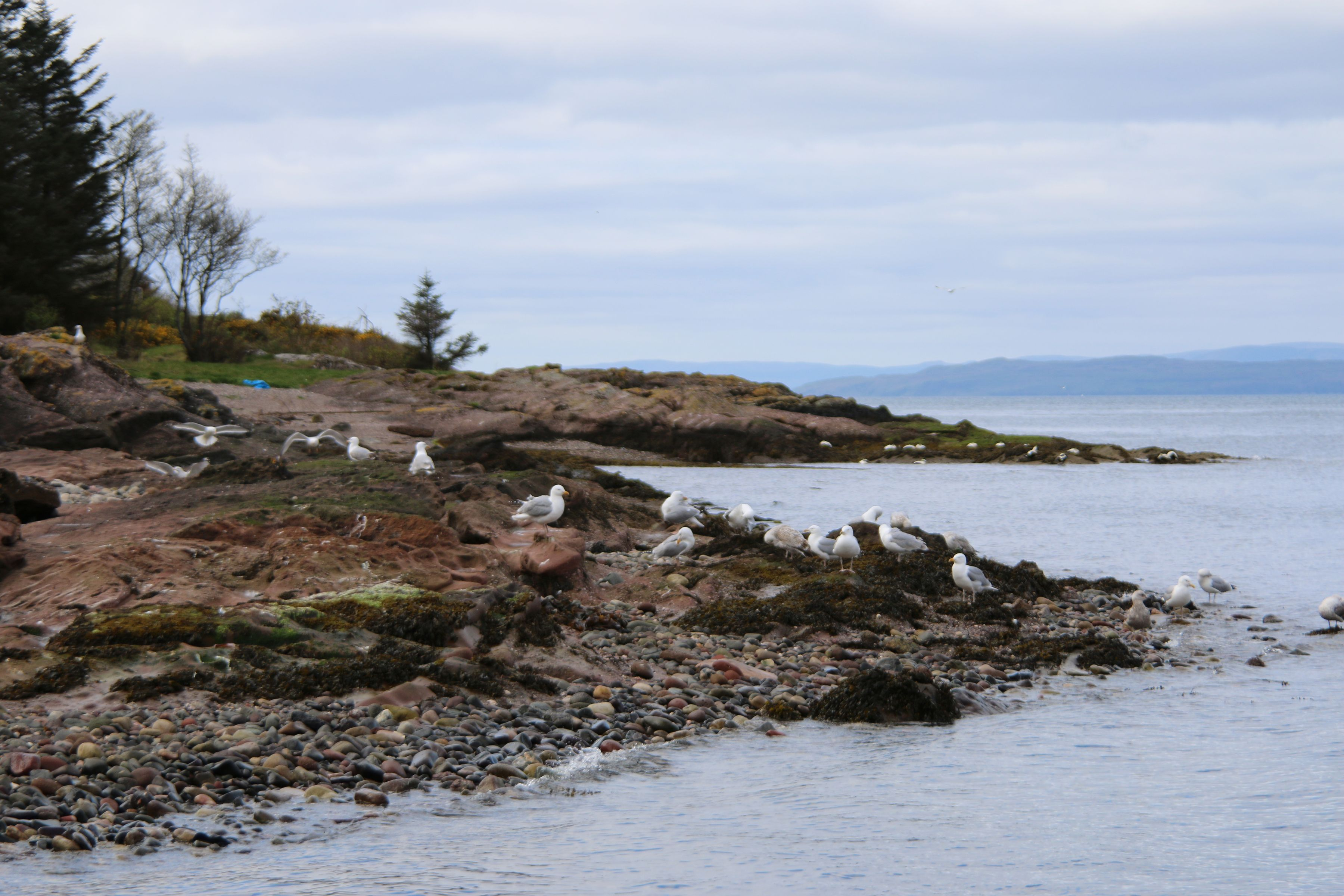 on the way to the island of Rothesay