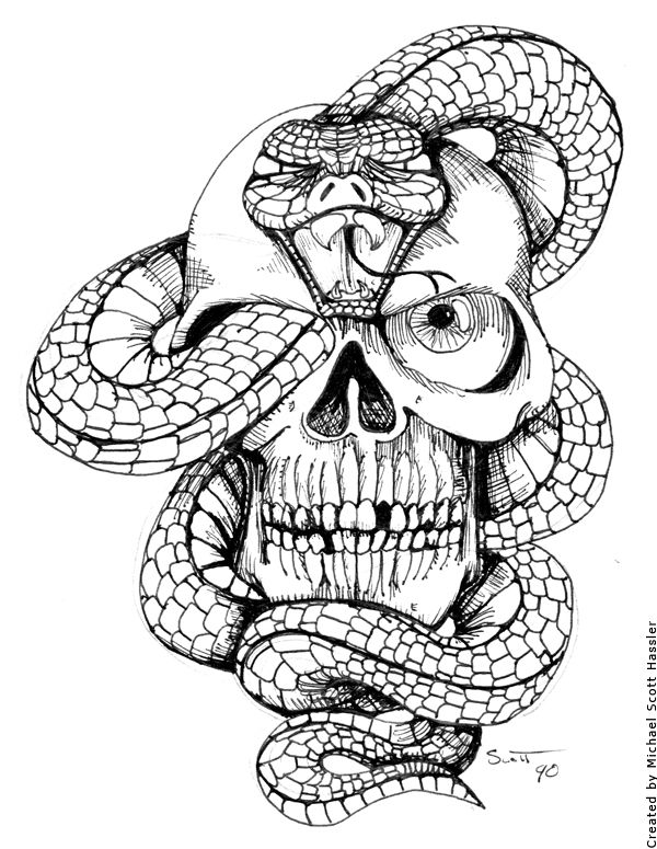 Snake and Skull by on deviantART