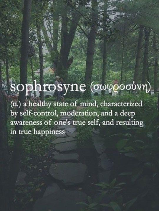 Sophrosyne