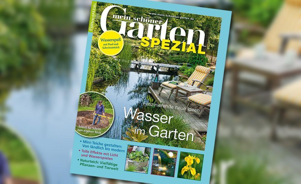 Mein Schöner Garten Spezial U2013 Wasser Im Garten: Für 4,50 Euro Ab Dem 24.  März 2016 Im Handel
