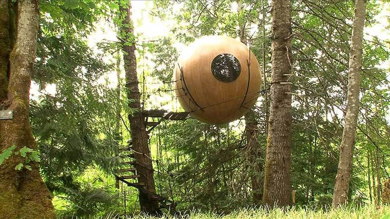 Exquisite Tree House Vacations That Allow You StayHigh