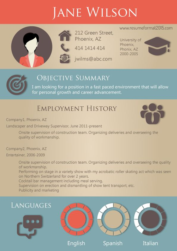 successful resume format 2015