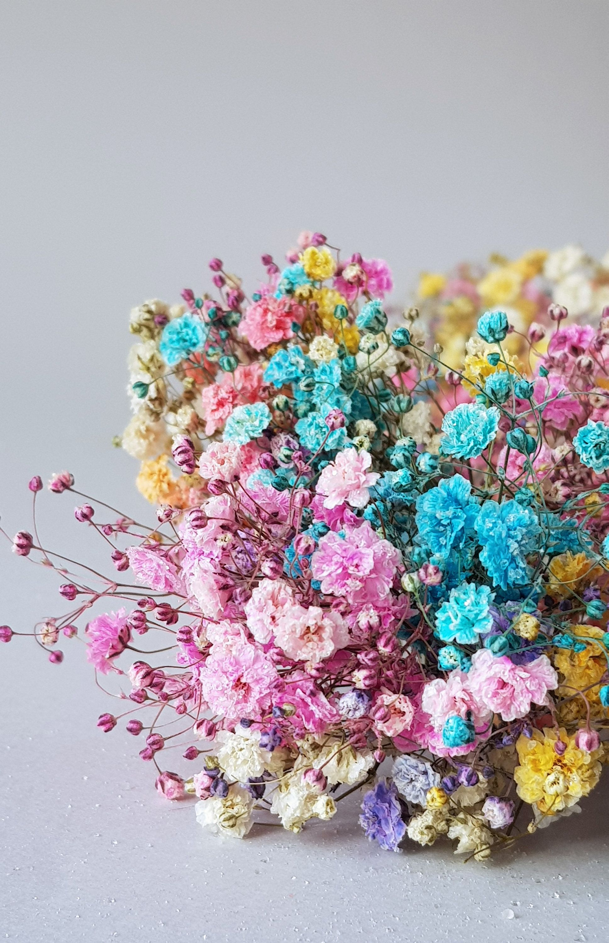 Multicolored Mix Of Gypsophila Little Flowers Dried Baby Etsy Tiny Flowers Dried Flowers Flowers Bouquet Gift