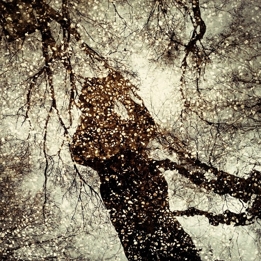 Espejo de agua by Luis Mariano González on 500px