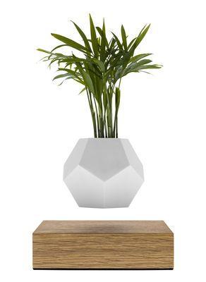Deco Pots Et Plantes Pot De Fleurs Lyfe Pot En Levitation