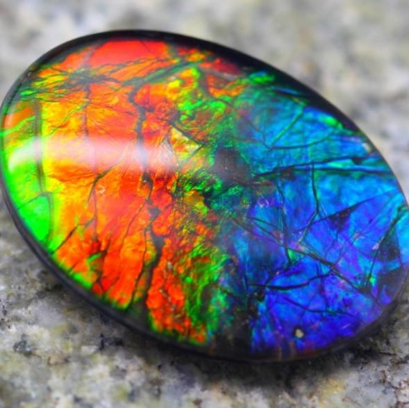 multi color canadian gemstone ammolite colorful colour